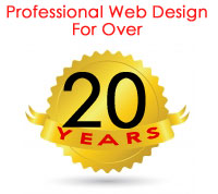 Work with a Professional Minneapolis Web Design Agency with 12 years of experience!
