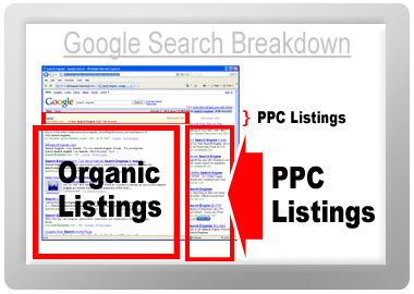 google's organic search and price per click search breakdown